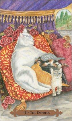 mystical-cats-11590