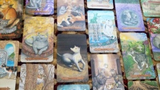 what-your-deck-says-about-you-mystical-cats-tarot