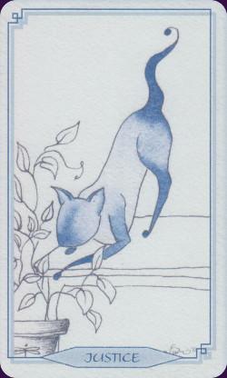 bleu-cat-12072