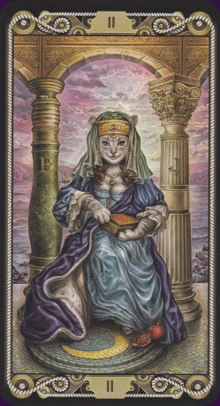 cat-tarot-14447