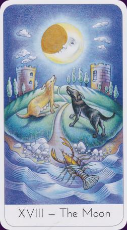 wisdom-seekers-tarot-14781